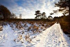2 противоположных путя в зиме на заходе солнца Стоковая Фотография