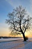 против вала захода солнца Стоковое Изображение RF