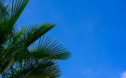 против вала неба Стоковая Фотография