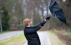 против ветра бой Стоковое Фото