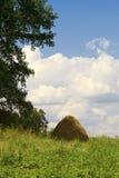против голубого неба haystack зеленого цвета травы Стоковое Фото