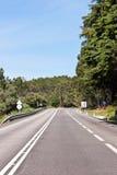 против голубых пустых древесин неба скоростного шоссе Стоковые Изображения