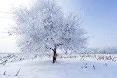 против голубой зимы валов снежка неба места ландшафта заморозка Стоковые Фотографии RF
