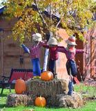 против летучих мышей полный halloween преследовал место тыквы луны дома Стоковое Изображение