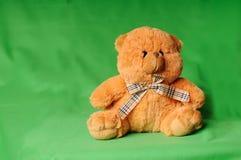 против игрушечного зеленого цвета медведя Стоковые Фото
