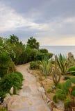 против камня моря путя сада Стоковое Изображение RF