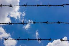 против колючих проводов голубого неба Стоковые Изображения RF