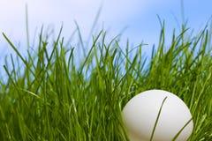 против настольного тенниса неба травы шарика голубого Стоковые Фотографии RF