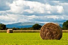 против неба v3 лужка сена bales Стоковая Фотография RF