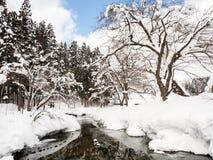 против предпосылки голубые облака field wispy неба природы зеленого цвета травы белое Замороженный фунт с снежными деревом и земл Стоковая Фотография RF