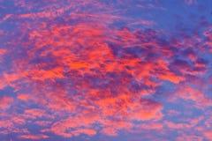против предпосылки голубые облака field wispy неба природы зеленого цвета травы белое Красное небо на ноче и облаках Красивый и c Стоковые Фото