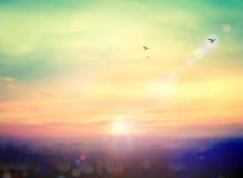 против предпосылки голубые облака field wispy неба природы зеленого цвета травы белое Стоковые Изображения