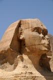 против сфинкса пирамидки Египета Стоковая Фотография