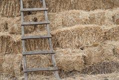 против трапа haystack Стоковая Фотография RF