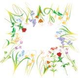против b очистьте белизну вектора иллюстрации цветка Стоковые Изображения RF