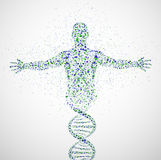 прототип человека Стоковые Изображения RF