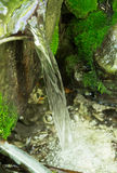 Проточная вода в лесе Крыма Стоковая Фотография RF
