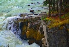Проточная вода Sunwapta Falls от реки Sunwapta в яшме национального парка, Альберте, Канаде Стоковое Изображение