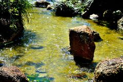 Проточная вода Tranquel стоковое изображение rf