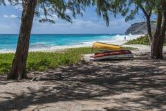 Протухший залив, Барбадос, Вест-Индии Стоковые Изображения RF