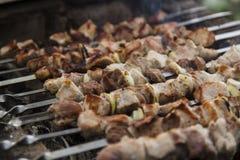 Протыкальники барбекю с мясом Стоковые Фотографии RF