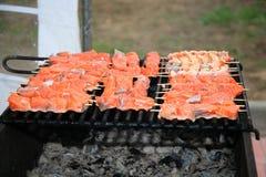 Протыкальники рыб форели Стоковая Фотография