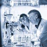 Профессионалы здравоохранения исследуя в научной лаборатории Стоковые Фотографии RF