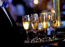Профессиональное вино сервировки Стоковое Фото