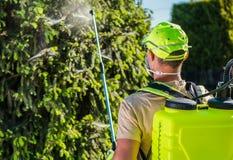 Профессиональное обслуживание инсектицида стоковая фотография