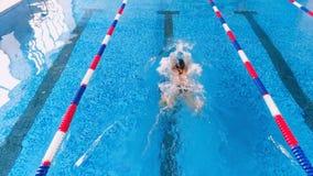 Профессиональные женские пловцы участвуя в гонке в бассейне Взгляд сверху видеоматериал