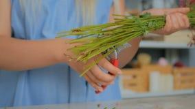 Профессиональные стержни цветка вырезывания флориста на студии акции видеоматериалы