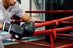Профессиональный молодой боксер в кольце стоковые изображения