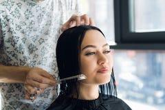 Профессиональный парикмахер, стилизатор расчесывая волосы женского клиента в профессиональной парикмахерской Красота и концепция  стоковые изображения rf