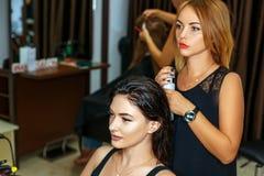 Профессиональный парикмахер с клиентом в салоне стоковое изображение