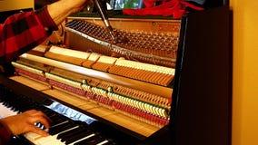 Профессиональный техник рояля играя ключи и настраивая строки с инструментом видеоматериал