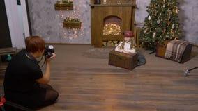 Профессиональный фотограф фотографируя модель девушки в студии фото рождества акции видеоматериалы
