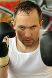 профессионал боксера стоковые изображения rf