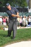 профессионал гольфа стоковые фото