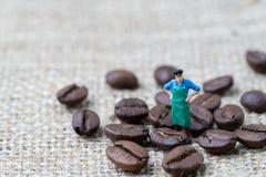 Профессионал кофе или концепция экспертизы, миниатюрное figur людей стоковые изображения
