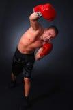 профессионал 2 боксеров стоковые изображения rf