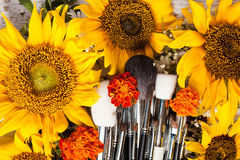 Профессионал составляет щетки рядом с красивыми полевыми цветками стоковые изображения rf