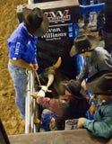 Профессиональная конкуренция катания Bull Стоковые Изображения