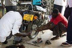 Профессиональная подготовка Африка Стоковые Изображения RF