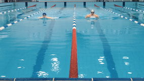 Профессиональные пловцы спортсмена состязаясь в бассейне акции видеоматериалы