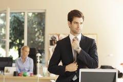 Профессиональный бизнесмен Стоковые Фотографии RF