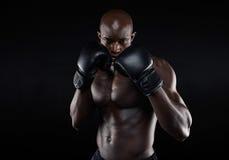 Профессиональный боец готовый для боя Стоковое фото RF