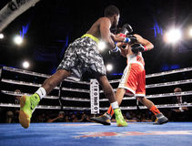 Профессиональный бокс в Фениксе, Аризоне Стоковые Фотографии RF