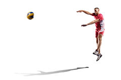 Профессиональный игрок valleyball изолированный на белизне Стоковая Фотография RF