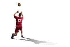 Профессиональный игрок valleyball изолированный на белизне Стоковые Изображения RF