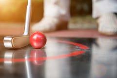 Профессиональный концентрат игрока minigolf для того чтобы ударить шарик Стоковые Фотографии RF